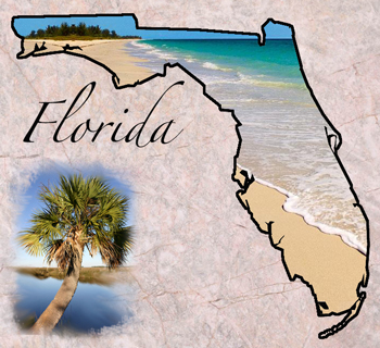 Florida State Symbols Facts Photos Visitor Info - Florida state bird and flower and tree