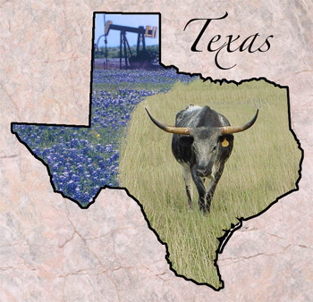 Texas - Fun Facts, State Symbols, Photos, Visitor Info